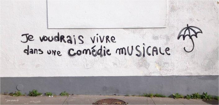 comedie-musicale_jcm-photo_JeanClaudeM