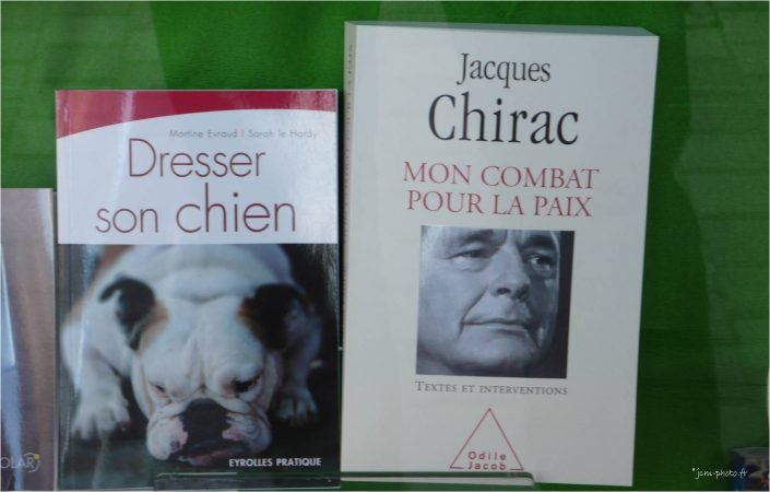 chien_Chirac_jcm-photo_JeanClaudeM