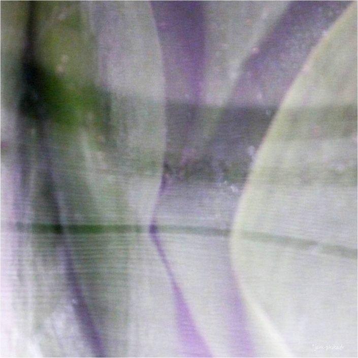 Green_enigma-01 abstrait JeanClaudeM jcm-photo